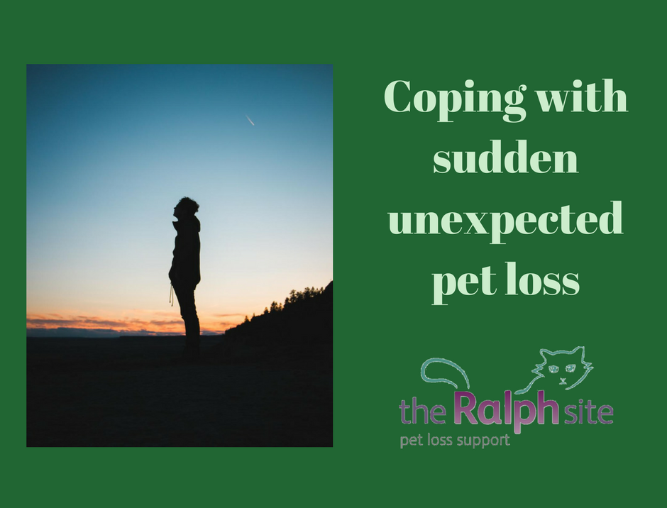 Best life quotes cope grief someone dies unexpectedly